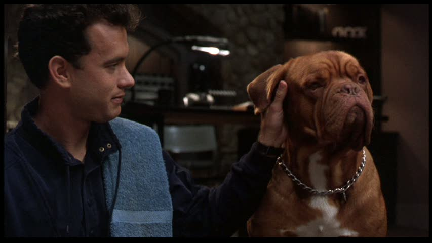 Predictably Turner and Hooch develop a warm human-dog chemistry.