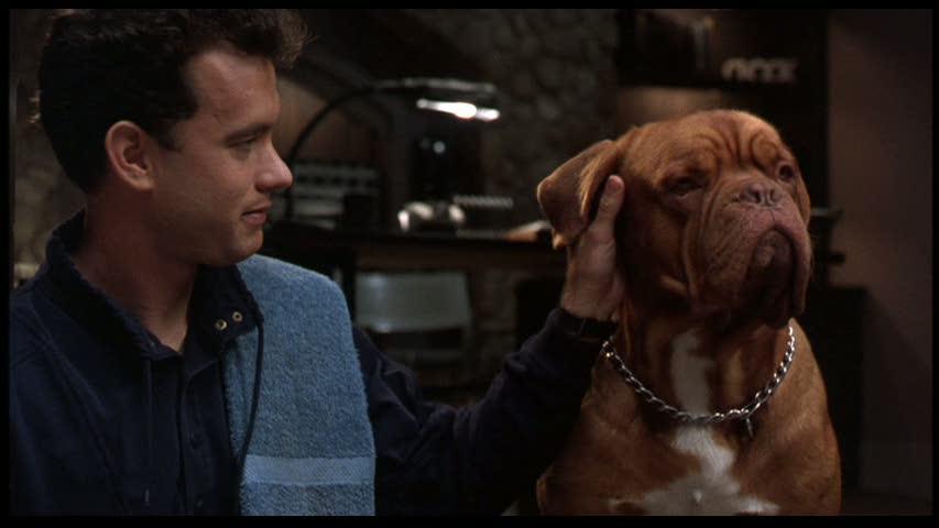 Predictably Turner and Hooch develop a warm human-dog chemistry.