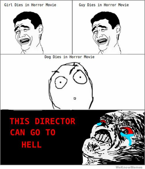 this-director-can-go-to-hell