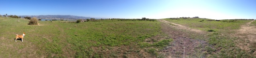 Too much acreage for one Panorama